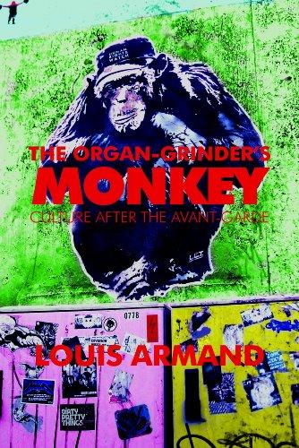 organ grinder monkey - 9