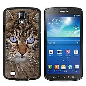 TECHCASE---Cubierta de la caja de protección para la piel dura ** Samsung Galaxy S4 Active i9295 ** --Maine Coon americana Gato de pelo largo