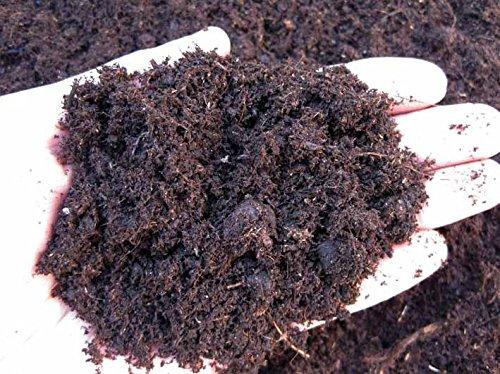 Turba, terriccio para plantas de ensalada (Potgrond H-Klasmann) (10 kg 27 lt-): Amazon.es: Jardín