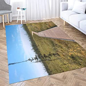 Play Area Rug,Shorping 3X5 Flower Door Area Rugs Modern Big State Park The Largest in and of Country is Minnesota One Space Area Rug Rugs for Living Room Large Area Rugs Area Rug for Kids