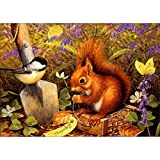 LIPHISFUN Diamond Painting Kits for Adults Full Drill Square Resin Rhinestone Embroidery Unfinished Cross Stitch Home Decor Gift squirrel Bird(30x40cm)