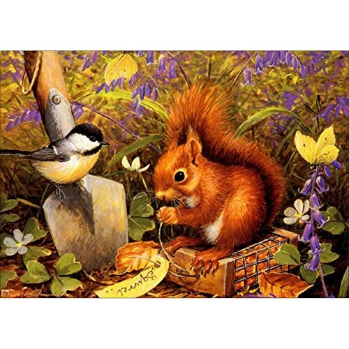 LIPHISFUN Diamond Painting Kits for Adults Full Drill Square Resin Rhinestone Embroidery Unfinished Cross Stitch Home Decor Gift squirrel Bird(30x40cm) by LIPHISFUN