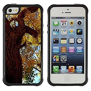 fashion Case Autumn Tree Leaves Golden Forest Sky Nature Apple Iphone 4s