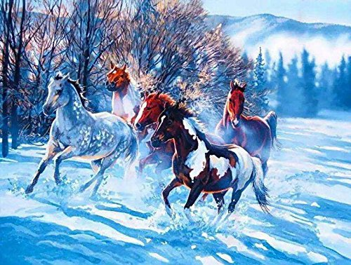 JynXos Wooden Framed Paint By Number Horses Linen Canvas DIY Painting - Horse Team Running