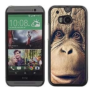 A-type Arte & diseño plástico duro Fundas Cover Cubre Hard Case Cover para HTC One M8 (Chimpancé Chimpancé Mono)