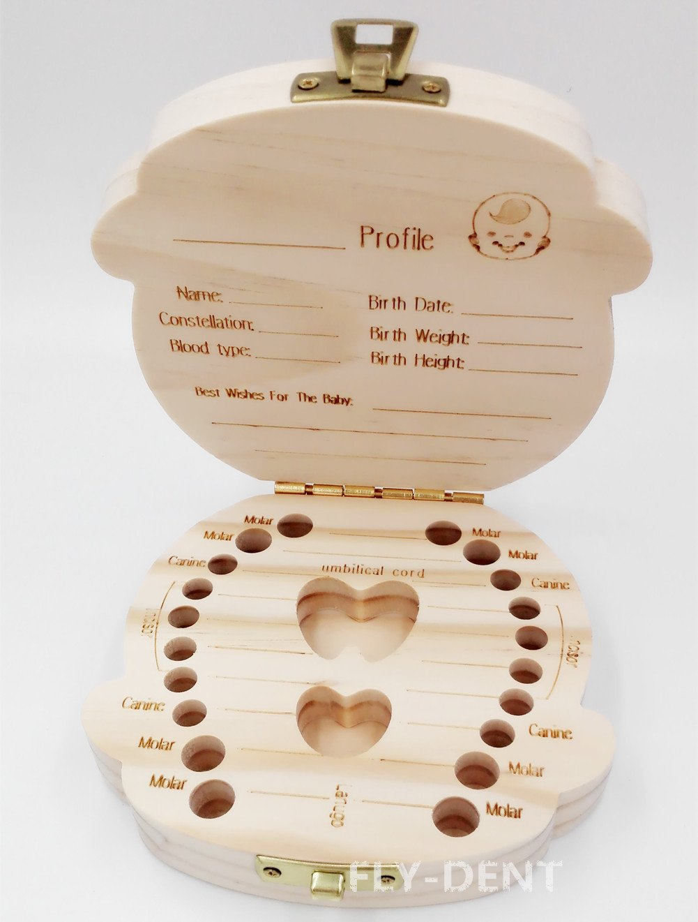 Wood Boy Shape Baby Teeth Box English Version 1Pc by fly-dent (Image #2)
