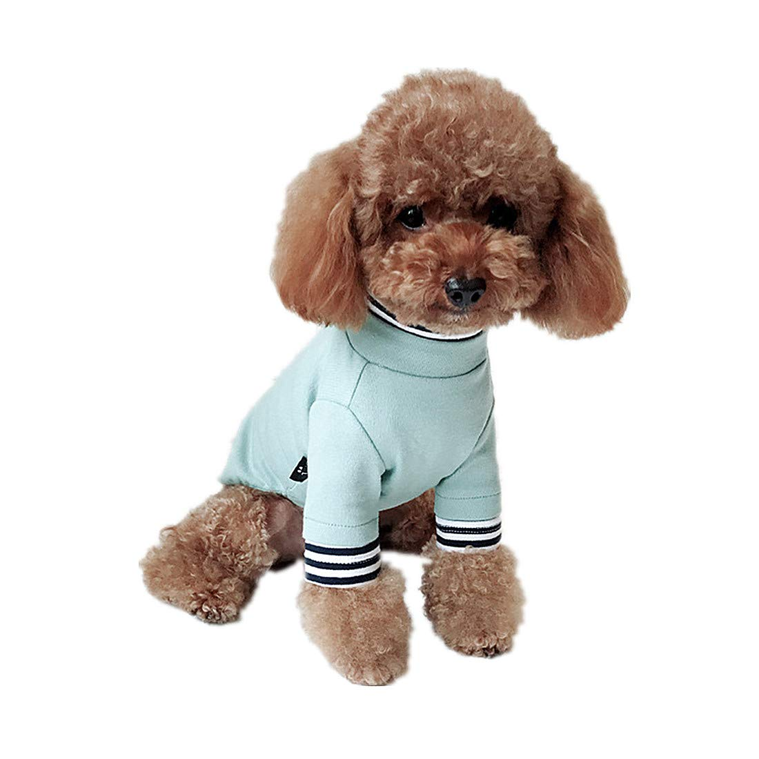 PZSSXDZW Vestiti per Cani Teddy Vestiti Vestiti dellanimale Domestico Vestiti per Cani Piccoli Vestiti Bomei Vestiti a Due Gambe Pink Small