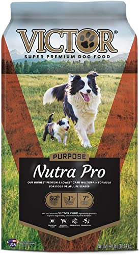 VICTOR Purpose Dry Dog Food