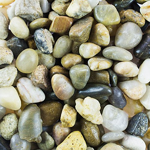 61z4rmUVAWL - Mini Assorted Garden Beach Stone Rocks Pebbles Aquarium Lake Collection for Outdoor & Indoor Home Garden Decoration, Arts & Crafts Projects, Party Favors, Invitation (1 Pound Bag)