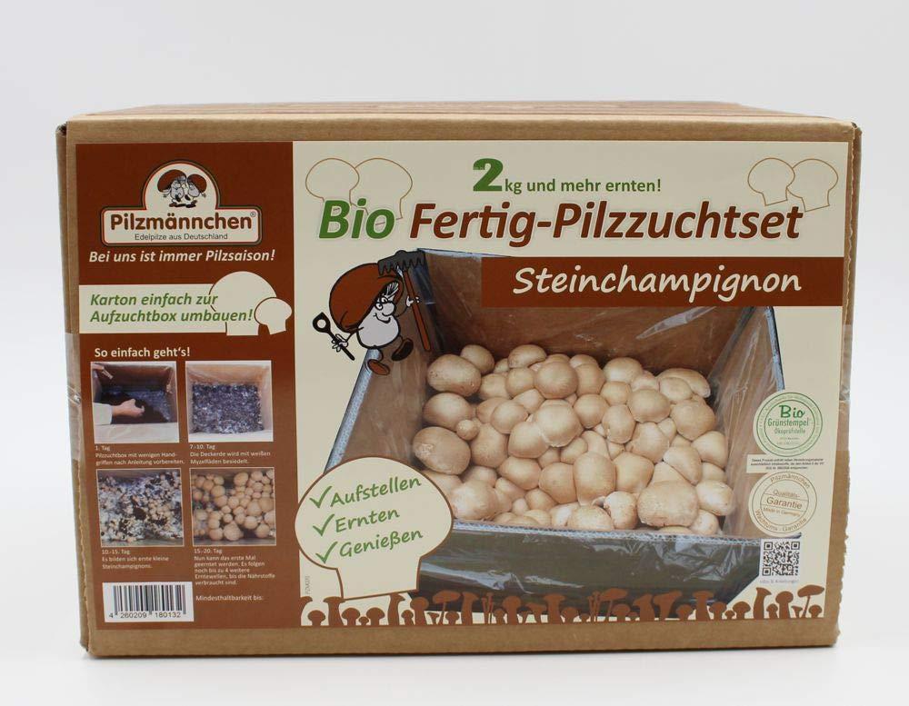 Bio Steinchampignon Pilzzucht 5 kg Kultur - kinderleicht zu aktivieren im Komplettset