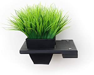 CatastrophiCreations Raised Planter for Cats Elevated Wall-Mounted Cat Grass Feeder for Pets or Decorative
