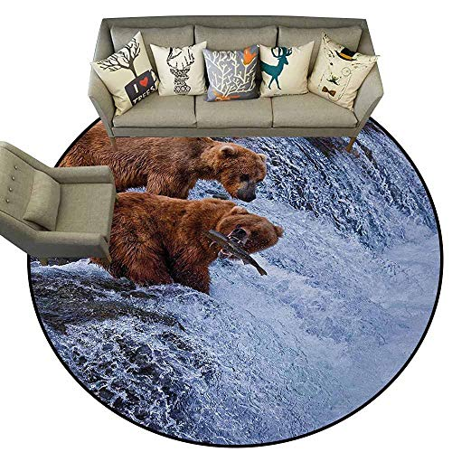 (Africa,Living Room Mats Area Rugs Nursery Rug D40 Grizzly Bears Fishing in The River Waterfalls Cascade in Alaska Nature Camp View Bath Rugs for Bathroom Non Slip Brown White)