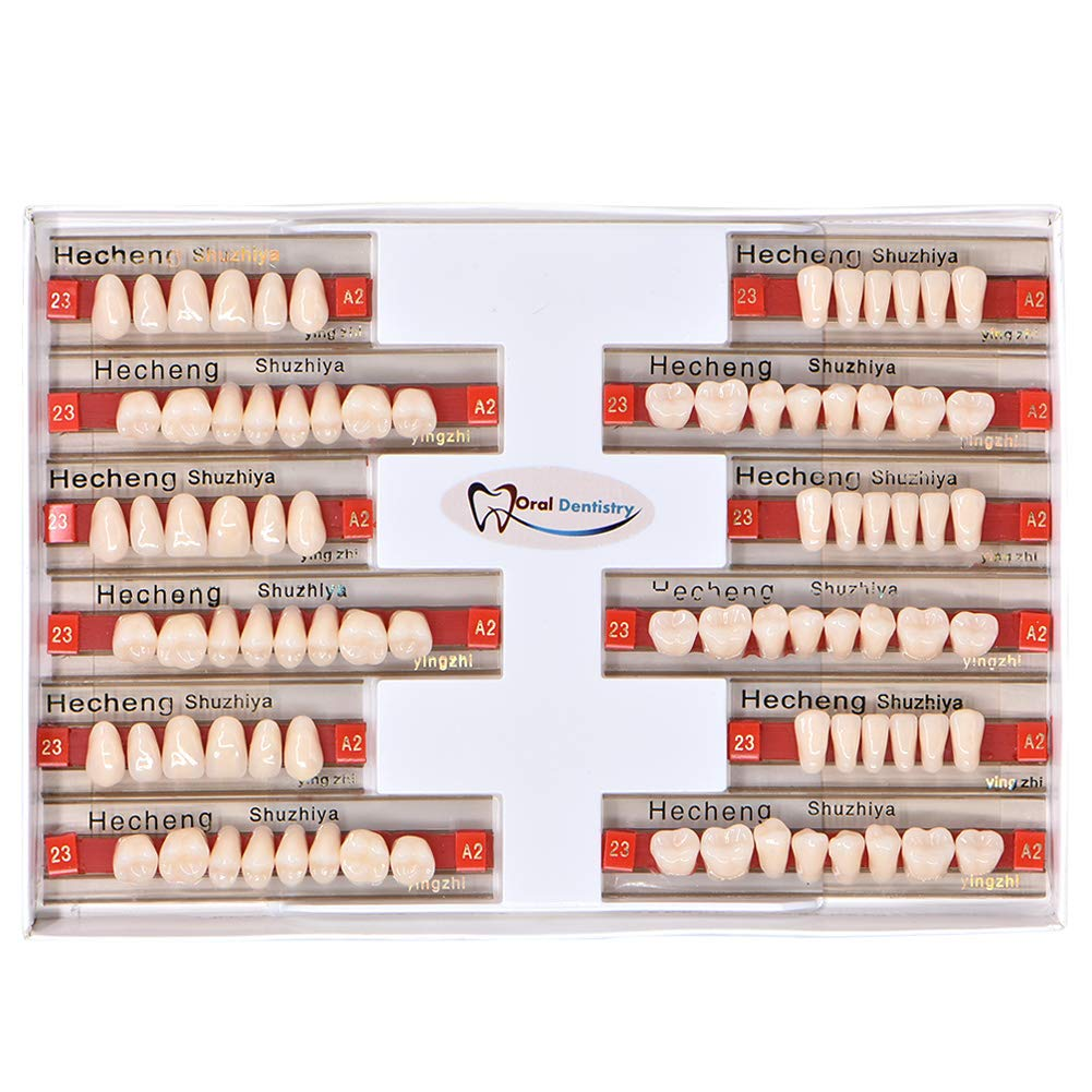 84 Pcs Dental Complete Acrylic Resin Denture False Teeth 3 Sets Synthetic Polymer Resin Denture Teeth 23 A2 Upper + Lower Dental Materials