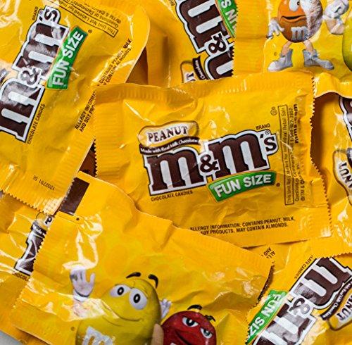 M&Ms Peanut Fun Size Candy- Bulk 5 Pounds