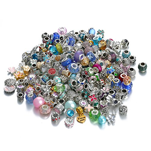 Assorted Silver Tone Charms Rhinestones Bead Charms Murano Glass Beads and Spacers Pack of -