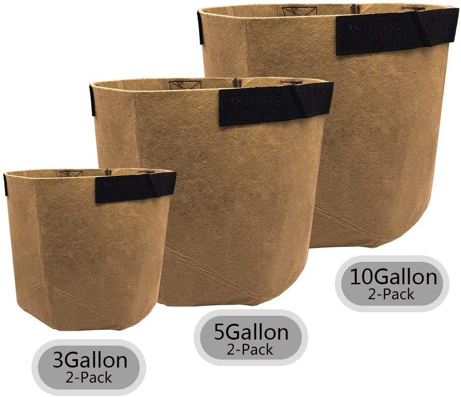 SingPad Grow Bags-3 Gallon 5 Gallon 10 Gallon Grow Bags w Handles,6-Pack Aeration Smart Fabric Pots for Growing Trees, Plants, Flowers, Vegetables, Tomatoes and Potatoes Tan