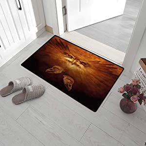 Leigh R. Avans Funny Doormat Animal Outdoor Mats for Front Door Hawk Eagle Bird Face and Claws with Feathers Wings in Fire Like Background Art Print 30