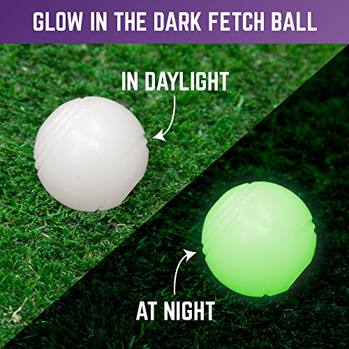 Chew-King-Ball-2-Piece-Glowing-Fetch-Ball-Dog-Ball-Toys-Fits-Ball-Launcher