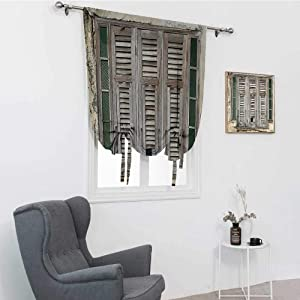 """Shutters Decor Collection Kids Curtains, Aged Weathered Wooden Window Blinds Rough Cracked Wall Vintage Home Decoration Thermal Insulated Panel, Beige Green, 42"""" x 72"""""""