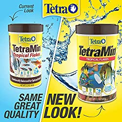 TetraMin Large Tropical Flakes For Top/Mid Feeders, 3.53-Ounce