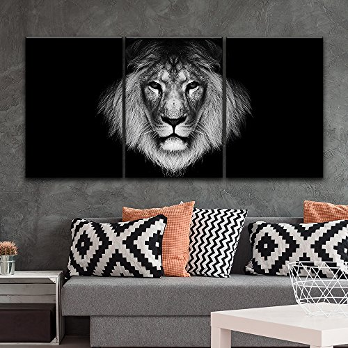 3 Panel A Lion Head on Black Background Gallery x 3 Panels