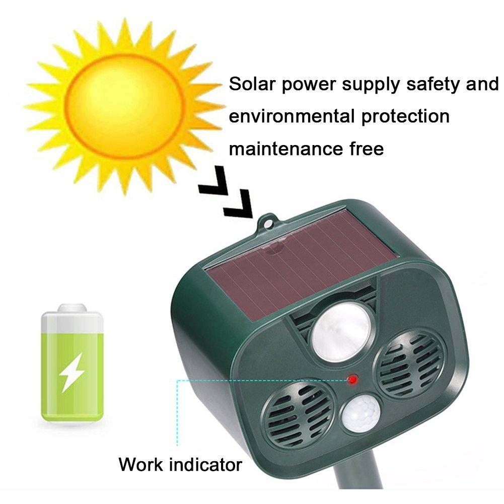 Amazon.com: GEZICHTA - Dispositivo de protección solar para ...