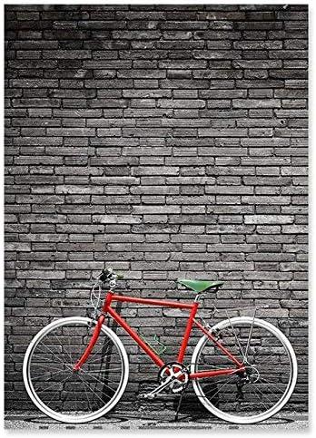 Pintura lienzo de bicicleta roja minimalista nórdica, pintura de ...