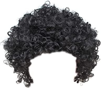 Blue Afro Clown Costume Wig Unisex Men Women Adult Curly Classic