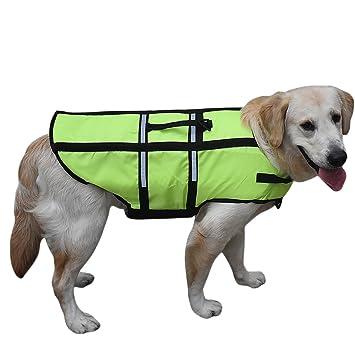 Perro Chaleco salvavidas flotador Chaleco reflectante ajustable flotabilidad: Amazon.es: Productos para mascotas