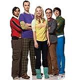 The Big Bang Theory Group - Advanced Graphics Life Size Cardboard Standup