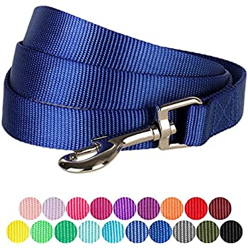 """Blueberry Pet 19 Colors Durable Classic Dog Leash 5 ft x 5/8"""", Royal Blue, Small, Basic Nylon Leashes for Dogs"""