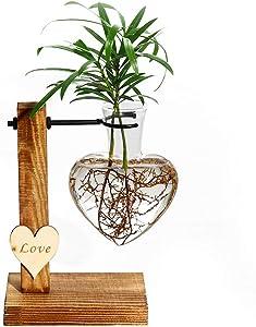 Kingbuy Hydroponic Glass Vase Vintage Desktop Plant Terrarium Planter Bulb Vase Water Planting Propagation Vase Libra planters Hydroponics Plants with Retro Wooden Stand Home Garden. (D(1 Bulb Vase))