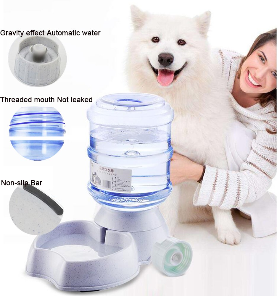 Amazon.com : Blessed family Cat Water Fountain, Automatic Cat Feeder ...