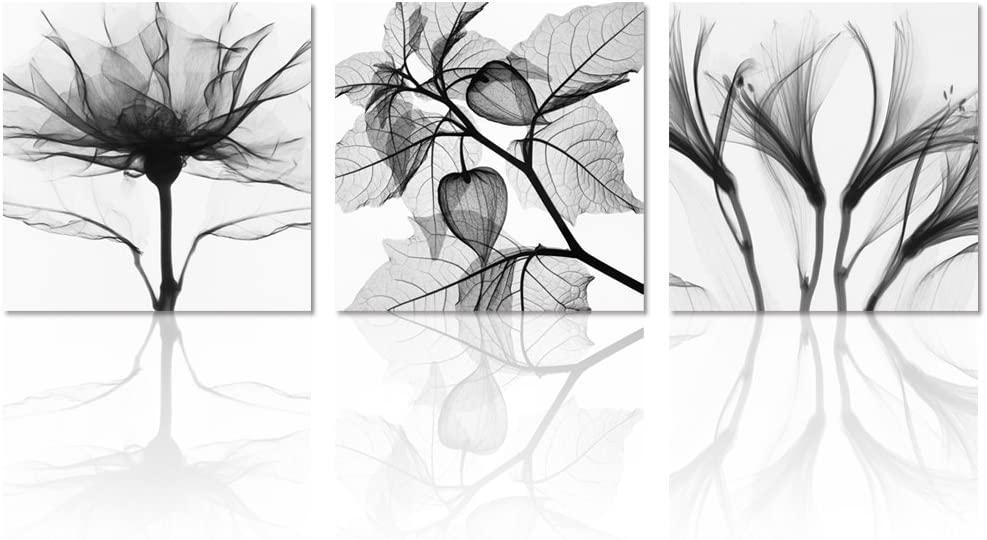 Visual Art Flowers Painting Canvas Prints Wall Decor Black and White Framed and Stretched Images Picture Prints Home Decor Wall Art