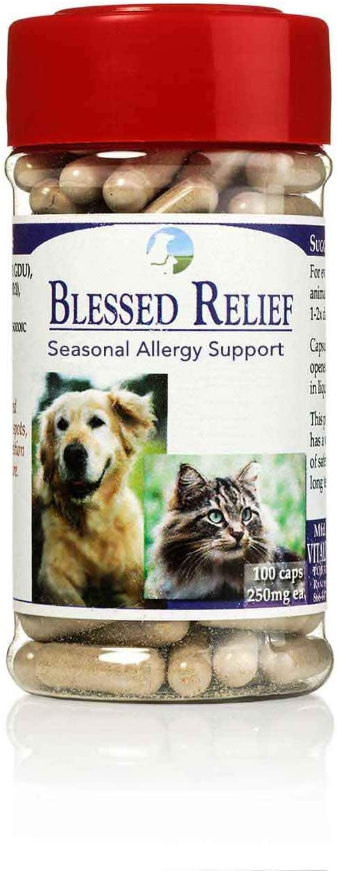 Vitality Science Blessed Relief for Dogs Seasonal Allergy Support Soothes Skin Problems Promotes Normal Respiratory Function Reduces Inflammation Boosts Immune Health 100 Safe and Natural