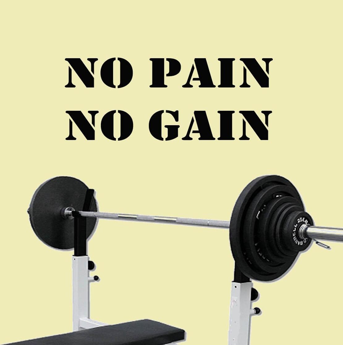 Amazon.com: No Pain No Gain Exercise Workout Gym Health and ...