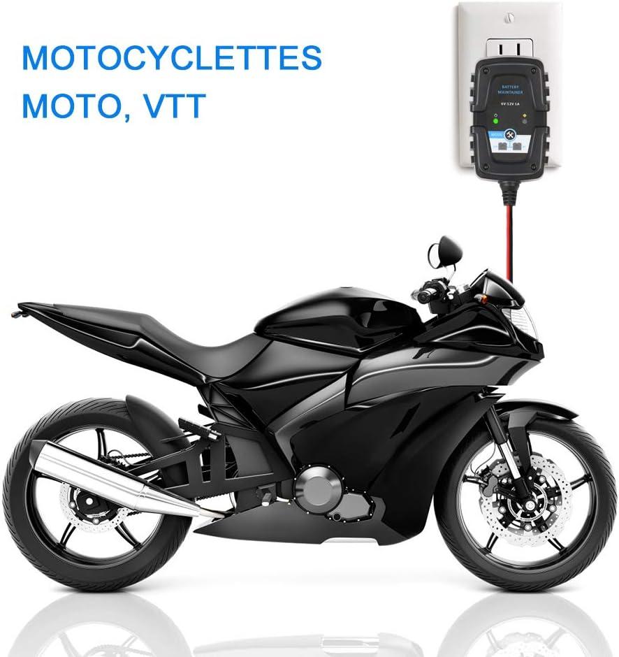 Pour Automobile Moto Scooter Cycle Profond AGM GEL VRLA Chargeur de Batterie (Ligne de connexion SAE) Directtyteam Chargeur de Batterie Automatique Intelligent R/éparateur 6 V 12 V 1 A