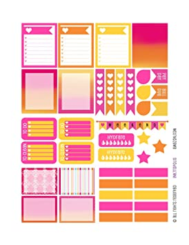 Planificador Mensual Planificador de pegatinas Tropical Bliss Sampler pegatinas etiquetas compatible con Erin Condren vertical planificador de vida: ...