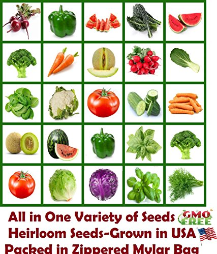 Heirloom Vegetable, All In 1, Vegetables Seeds, Fruit Seeds, Herb Seeds, Emergency Seed Vault, Seed Bank, Variety of Vegetable Seeds, Garden Seeds, Non GMO Seeds, Non Hybrid Seeds