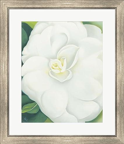 Amazon.com: White Camelia by Georgia O\'Keeffe Framed Art Print Wall ...