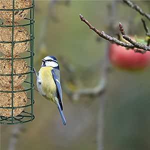 Cathy02Marshall Comedero para pájaros Chalet El Alimentador de Aves Silvestres para la Decoración del Jardín Fácil de Limpiar y Llenar Beautiful: Amazon.es: Hogar