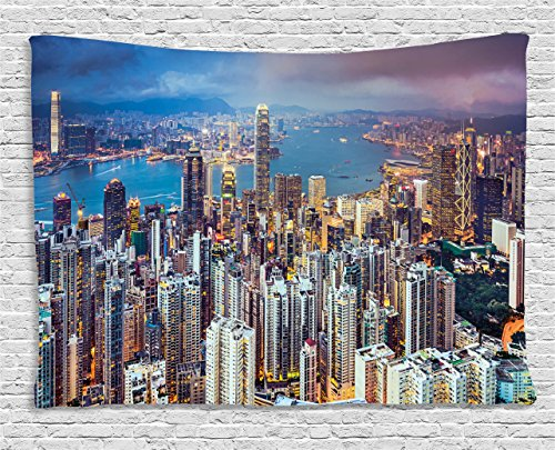 Ambesonne China Decor Tapestry, China Decor Hong Kong City Skyline Cityscape of Skyscrapers Digital Image, Wall Hanging for Bedroom Living Room Dorm, 60WX40L inches, Blue and Grey (Blue Tapestry China)