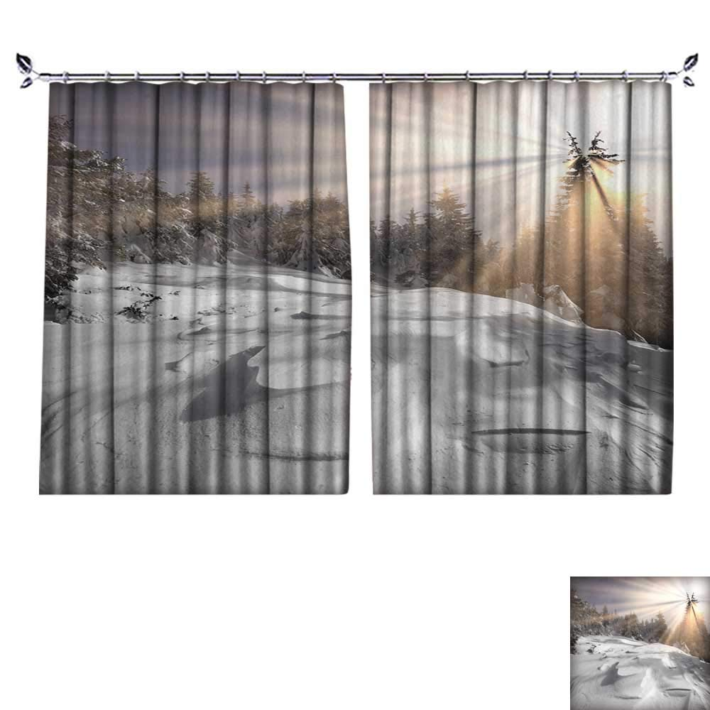 DESPKON Active Printing Fabric Polyester Material Severe Bad Weather threatening,Menacing and Frightening Ukraine Karpaty Montenegrin for Cartoon Children's Room W120 x L108