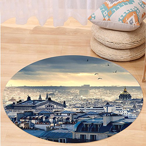 Niasjnfu Chen Custom carpetParis Decor Collection Paris Cityscape Taken From Montmartre Rooftops Flying Bird Pigeons Foggy Sunrise Bedroom Living Room (Aztec Sun Collection)