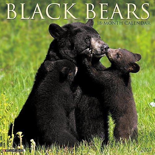 Black Bears 2017 Wall (Bear Calendar)