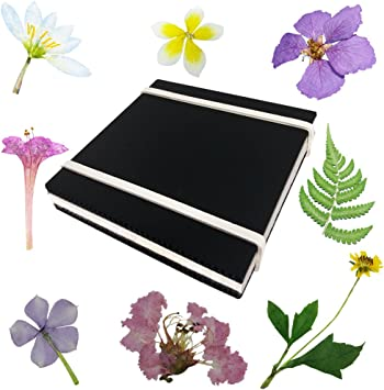 Amazon.com: Rtree - Juego de prensa para microondas y flores ...