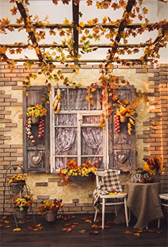 CSFOTO 5x7ft Background for Autumn Courtyard Patio Photography Backdrop Shutters Window Decorated with Garlic Pepper Corns Leaves Table with Fruits Leisurely Afternoon Studio Props Wallpaper