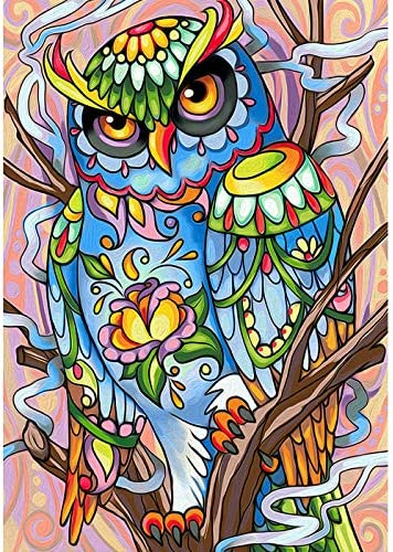 Cute Owl Canvas Diamond Painting Kits for Adults 5D DIY Paint by means of Numbers for Adults and Beginners
