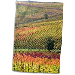 "3D Rose Italy-Tuscany. Colorful Vineyards and Olive Trees in Autumn Hand Towel, 15"" x 22"""