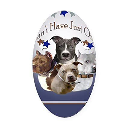 Cafepress pitbulls cant have just one journa oval car magnet oval car magnet